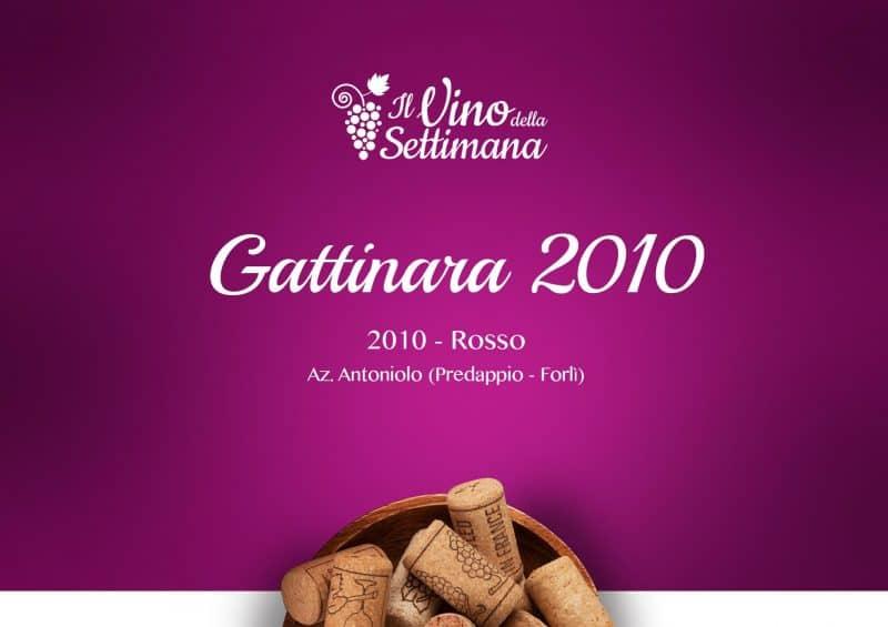Gattinara 2010 - Copertina SImon Italian Food