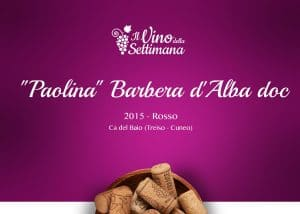 """Paolina"" Barbera d'Alba doc - 2015"