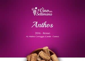 Copertina - Rubrica vino - Anthos
