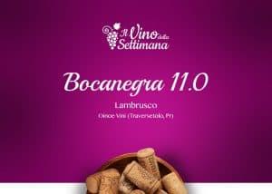 OINOE Vini-Bocanegra Lambrusco-copertina